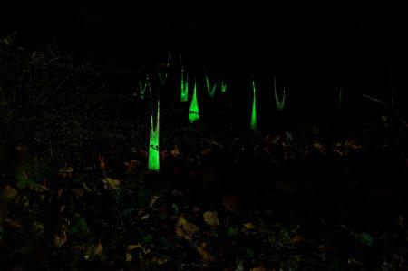 《Night Garden》ガラス、蛍光塗料/2013